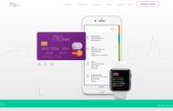 Nubank a startup brasileira de serviços financeiros que fez milhões em 2016