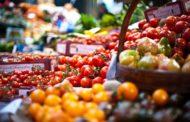 A Visão Holística na Nutrição