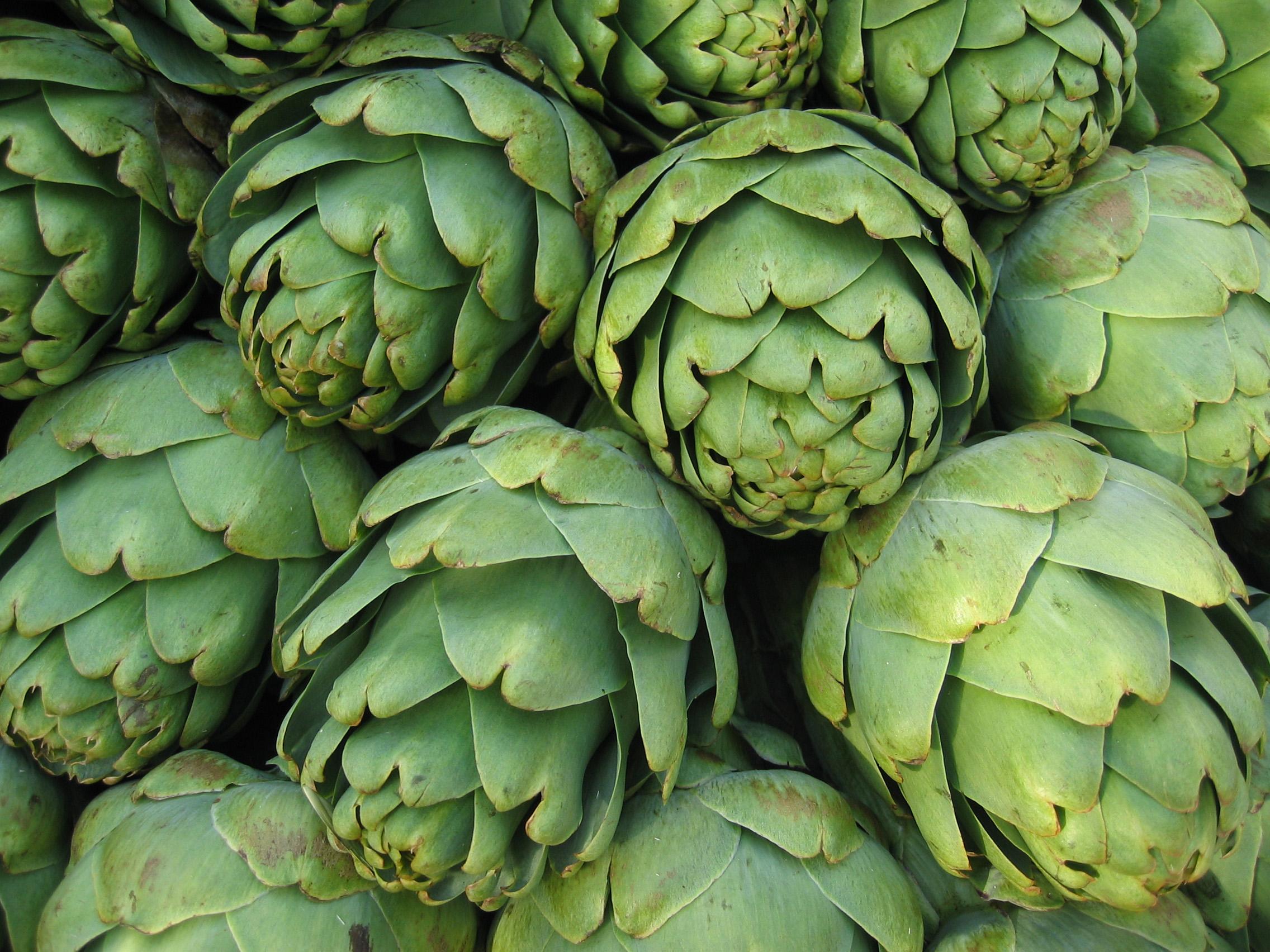 Entenda os benefícios da ALCACHOFRA (Cynara Scolymus) para a sua saúde