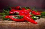 Entenda os benefícios da Pimenta (Capsicum Frutescens) para a sua saúde