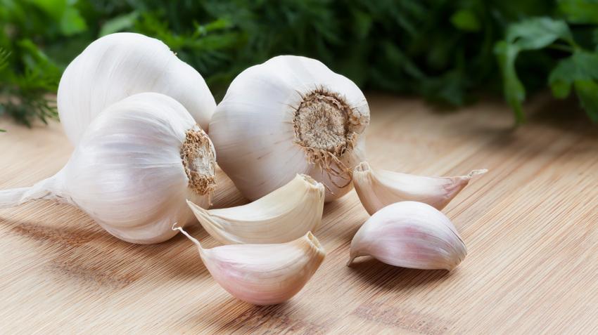 Entenda os benefícios do ALHO (Allium Sativum) para a sua saúde