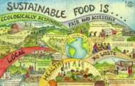 Como ser saudável, produtivo e sustentável em uma sociedade com tantos alimentos de baixo valor nutricional disponíveis a todo momento